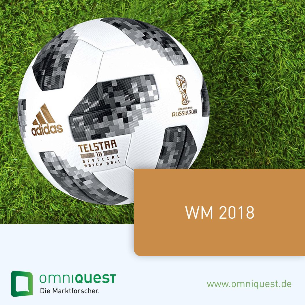 FastInsight <b>WM 2018</b>