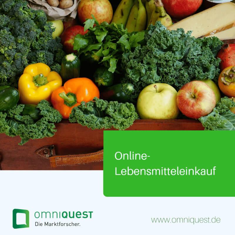 FastInsights <b>Online-Lebensmitteleinkauf</b>